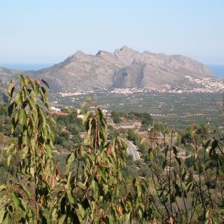 Vista de la serra de Segària i de la mar de Dènia i els Poblets desde La Vall de Laguar