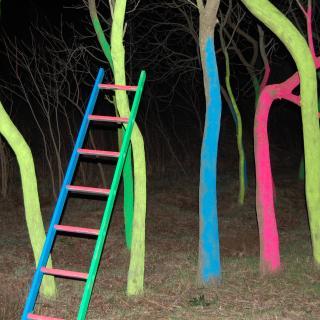 Bosch de somnis de colors, amb escala de colors del pintor Tomàs Vilà.