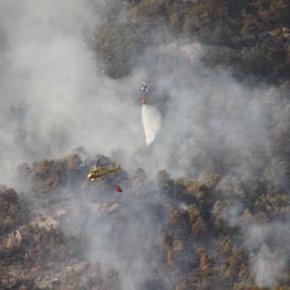 foc forestal a Ulldemolins