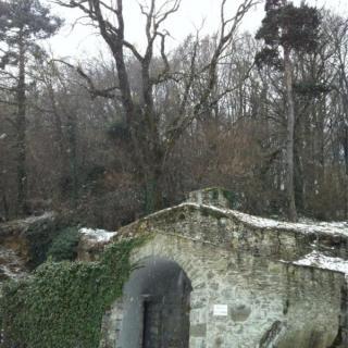 A Sant Feliu de Pallerols ha nevat a primera hora d'aquest diumenge