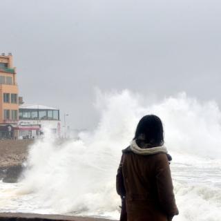 Una persona observant les onades a l'Escala