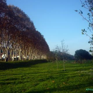 Parc Jalpi