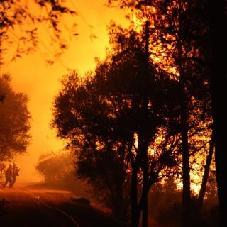 Un grup de Bombers treballen per evitar que les flames arribin als masos de Foixà