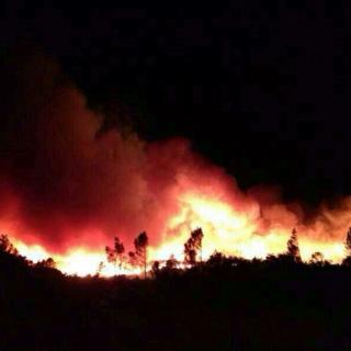 Foto incendi baix empordà ahir 11 a les 19:45