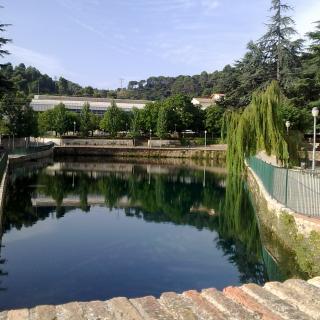 La bassa, surgencia natural de l'aqüífer Carme-Capellades
