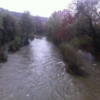 El riu Ter al seu pas pel municipi de Sant Julià del Llor i Bonmatí.