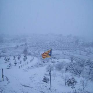 Neu a la Palma d'Ebre, a la Ribera d'Ebre. Només l'estelada  destaca sobre el color blanc.