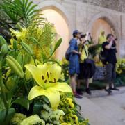 Girona.  60a edició de Temps de Flors, feu fotos d'ambient i d'altres espais, com ara el Modern, que es reobra, i el riu Onyar, que torna a estar guarnit.  1226#Quim Puig