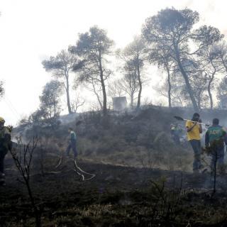 Efectius dels bombers i ADFs combaten el foc a Maians (Castellfollit del Boix)