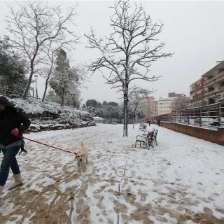 La nevada al Parc de sant Jordi de Terrassa