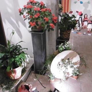 36a Exposició de flors a Sant martí de Llémena