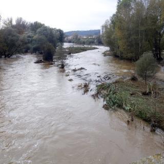 El Ter al seu pas per la zona de Pedret a Girona
