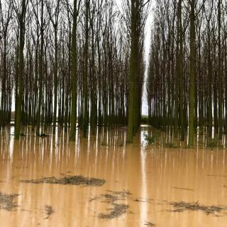 Inundacions entre Jafre i Verges