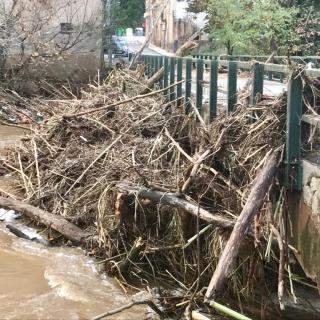Una pila de terra, arbres i canyes han quedat encallades al pont del riu Onyar, al seu pas per la Creueta