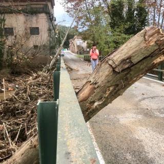 Els Mossos han tallat l'accés al tràfic al pont que passa per sobre l'Onyar i que condueix a la Creueta. Es pot creuar el pont a peu, però no en cotxe