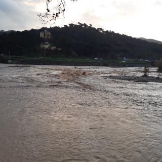 Riu Besòs dijous al matí