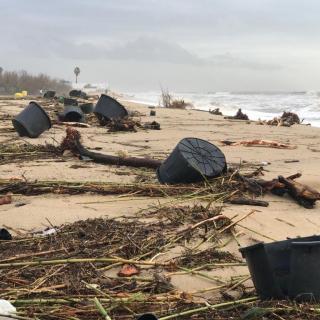 La platja de Cabrera apareix aquest dijous plena de testos i plàstics de tota mena