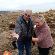 Dos voluntaris que ajudaven a netejar la platja d'Arenys de Mar troben una tortuga entre les restes del temporal
