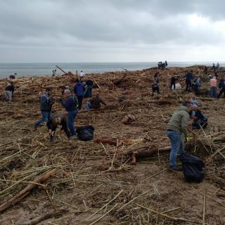 Desenes de voluntaris a Arenys de Mar s'organitzen per netejar la platja de plàstics i restes del temporal