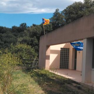 Avinyonet de Puigventós
