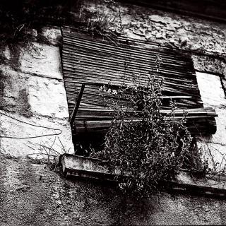 Girona carrer Ginesta - 2005