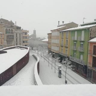 El municipi d'Olot, emblanquinat per la neu