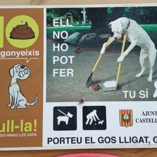 Lliçons canines a Castellar de n'hug.