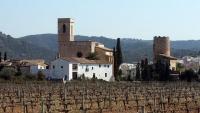 La jove va ser vista per última vegada dilluns a la zona del castell de Sant Pere de Ribes i va ser localitzada dimecres a casa d'uns familiars, a Portugal