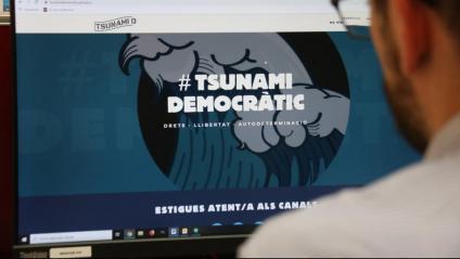 Un home observa el web de Tsunami Democràtic