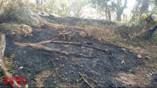 Vista de la zona que s'ha cremat al Puig d'en Xifre, a Palamós