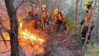 Efectius dels Bombers treballen per contenir l'incendi, aquest dilluns a la serra de Tivissa