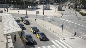Diversos taxis a la parada de l'estació de Sants, a Barcelona
