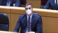 El president del govern espanyol, Pedro Sánchez, aquest dimarts al Senat