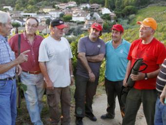 Un grup de caçadors a les vinyes del sud de la comarca on han fet aguaits nocturns Griselda Escrias
