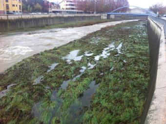 El riu Ges a Torelló poc abans de connectar amb el Ter, aquest diumenge al matí. És visible el rastre de l'avinguda.