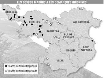 Mapa de les comarques gironines amb la situació dels boscos madurs que formen part de la xarxa que ha creat la Diputació