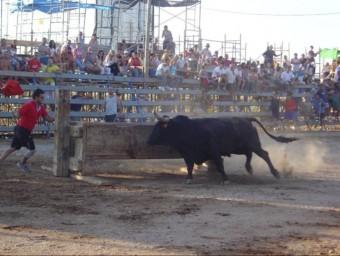 Camarles, amb els bous del desembre tancarà la temporada taurina a l'Ebre. EL PUNT AVUI