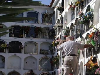 un home posa flors en un dels nínxols del cementiri de Premià de Mar. /  G.A