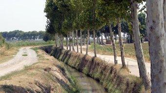 Una de les sèquies secundàries del canal d'Urgell, al terme municipal de Vallfogona de Balaguer. A. PUIG