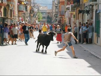 Els correbous estan ben arrelats a molts municipis del Baix Ebre i Montsià. La imatge es correspon a les festes majors d'Ulldecona. EL PUNT