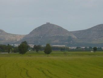 Camps d'arròs del futur parc natural, amb el massís del Montgrí al fons./  A.V
