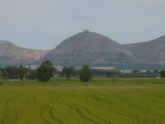 Camps de conreu del futur parc, amb el massís del Montgrí al fons./  A.V