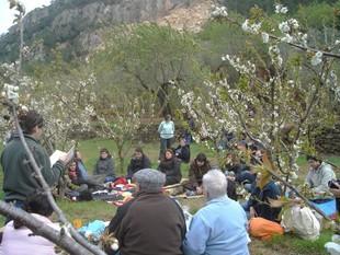 Una trentena de persones van participar en el primer hanami literari ebrenc.  A. P