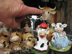 Vaques en miniatura de la col·lecció de Rosa Lloveras.  NÚRIA FORNS