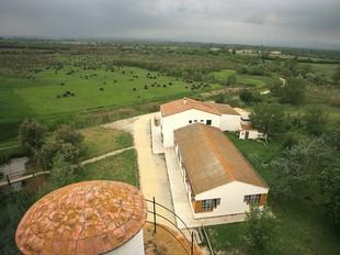 Una imatge d'una edificació al bell mig dels Aiguamolls de l'Empordà.  MANEL LLADÓ