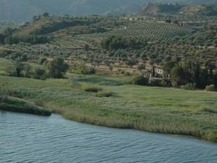 El centre està ubicat a la Reserva Natural del Paratge de Sebes, al Mas de Pitoia. EL PUNT