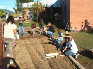 Un grup d'alumnes en plena acció a l'hort ecològic de l'escola.  EL PUNT