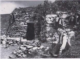 Un pastor al pla d'Anyella. Arxiu Comarcal del Ripollès