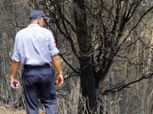 Un bomber observava ahir, desolat, els efectes del devastador incendi.  JUDIT FERNÀNDEZ