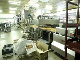 Imatge de les instal·lacions i treballadors d'Inpanasa a Aiguaviva on es fa el producte.  EUDALD PICAS